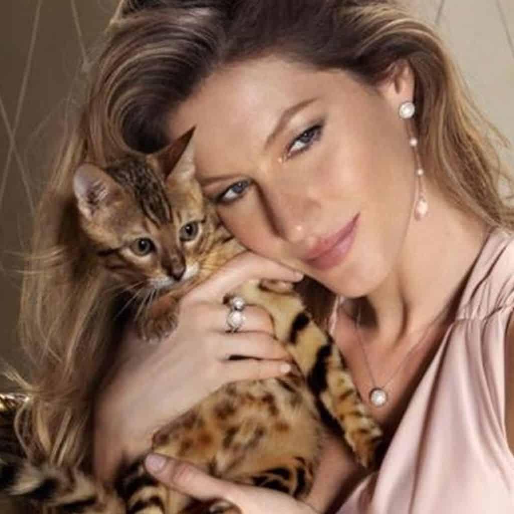 actriz con gato bengali