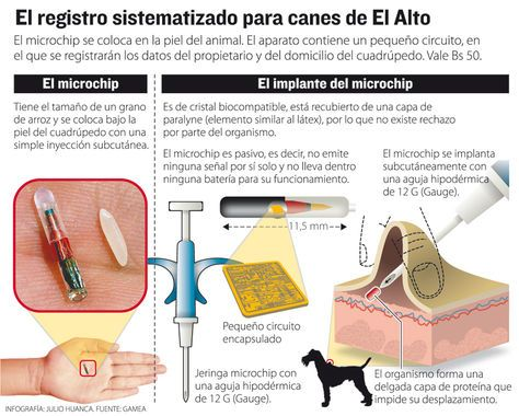 Info-registro-canes-Alto_LRZIMA20140709_0003_11