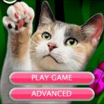 Descarga los mejores juegos para gatos